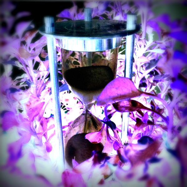 Hourglass 96